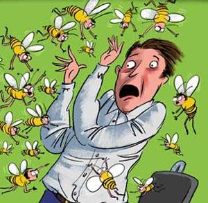 Фото №1 - Владивосток атакуют пчелы
