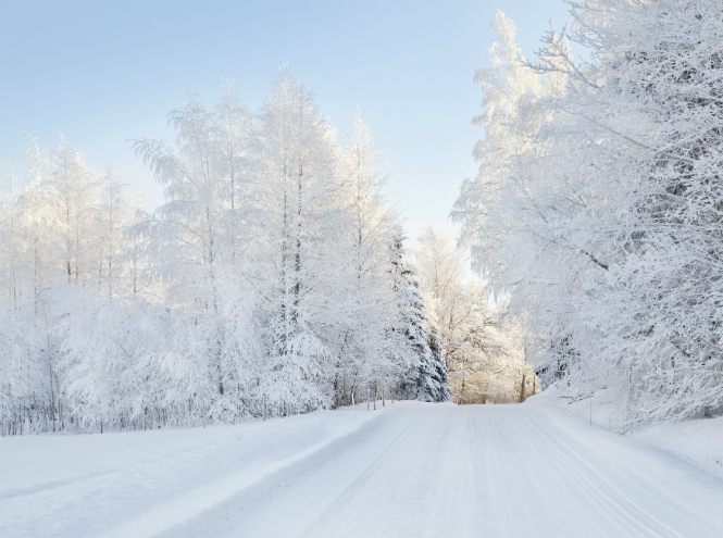 Фото №5 - Let it snow: самые снежные страны