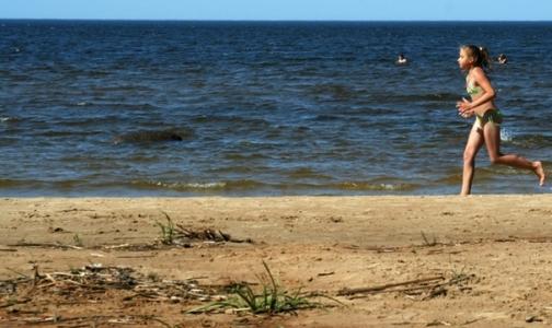 Фото №1 - Эпидемиологи разрешили купаться в районе Соснового Бора