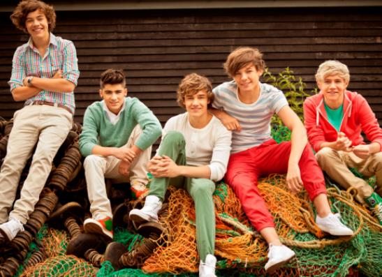 Фото №1 - One Direction выпустит косметику для девушек