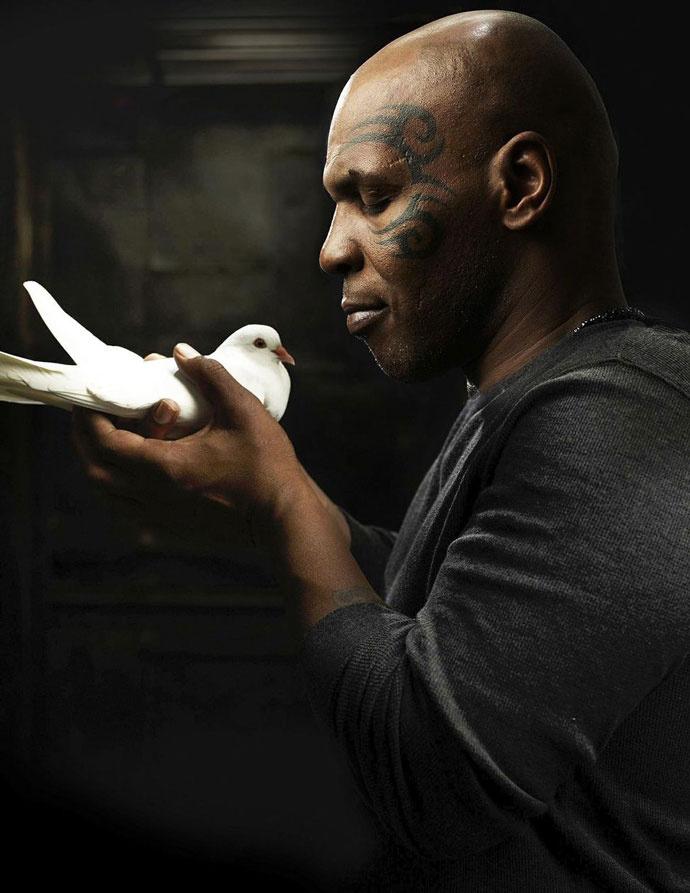 Майк Тайсон и голубь