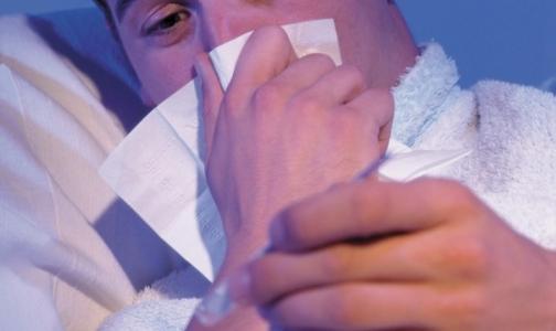Фото №1 - В Петербурге выявляются случаи заболевания «свиным» гриппом