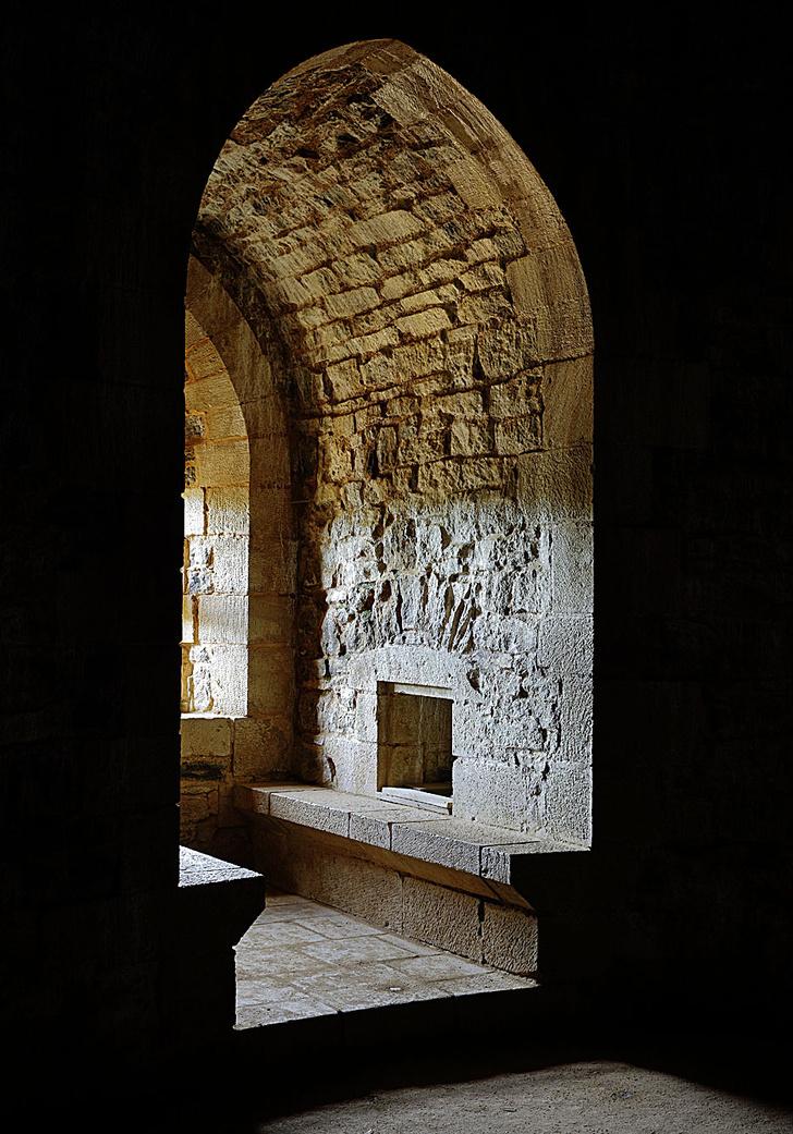 Фото №12 - Фотопроект: строящее Средневековье