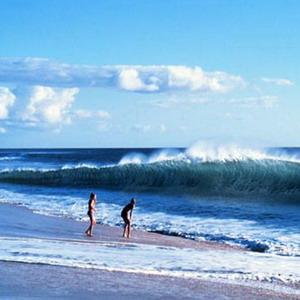 Фото №1 - Спасение от цунами