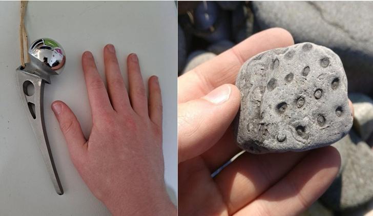 Фото №1 - 10 странных штуковин, объяснение которым нашли в Интернете