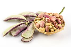 Фото №26 - Пища наша: 14 сортов фасоли, которые стоит попробовать