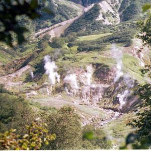 Фото №1 - Долину гейзеров на Камчатке затопило