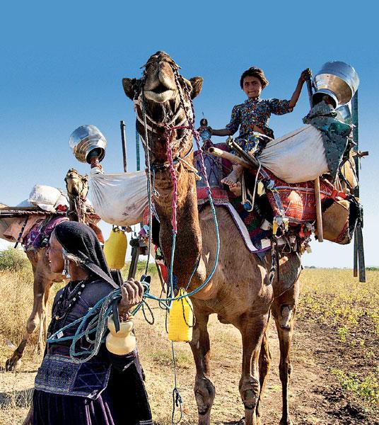 Фото №2 - Священные цепи: репортаж с цыганской свадьбы