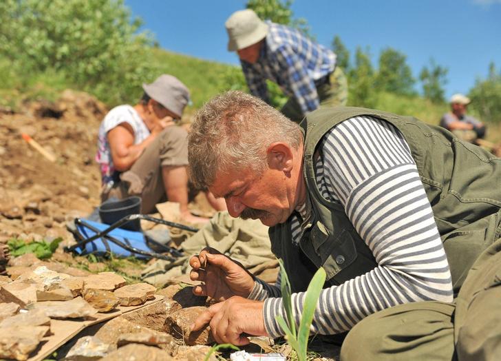 Фото №18 - Динозавр из Помпеев юрского периода: история открытия и изучения ящера из Забайкалья