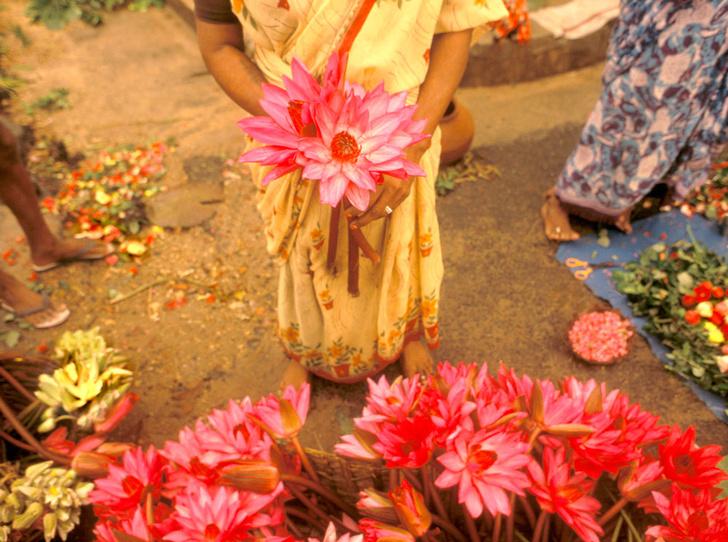 Фото №7 - В Индию за просветлением: жизнь в ашраме