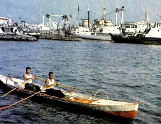 Фото №1 - Весла для океана