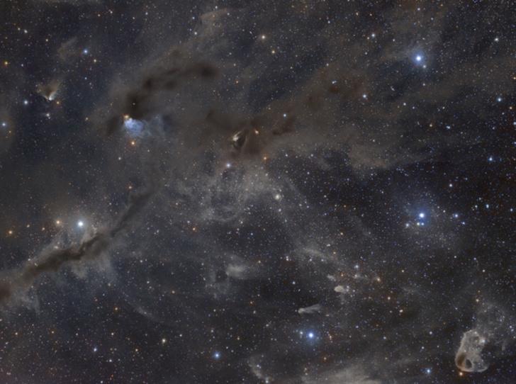 Фото №5 - Астрологический прогноз на декабрь 2020 по знакам Зодиака
