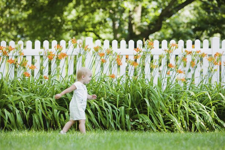 Фото №1 - 6 способов красиво и недорого оформить изгородь на даче