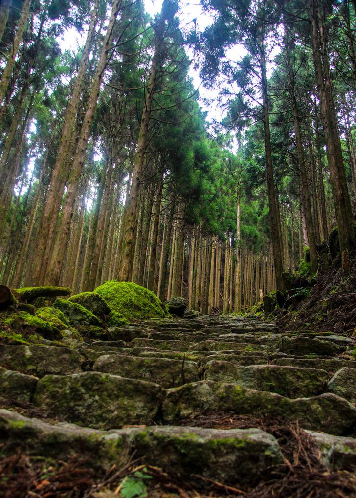 Фото №8 - По следам древних паломников: 5 пилигримских маршрутов