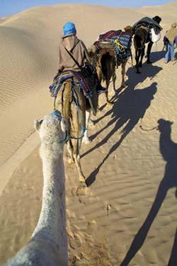 Фото №2 - Арабская вязь