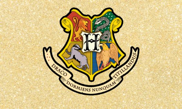 Фото №1 - Тест: Сколько в тебе процентов от каждого факультета Хогвартса?