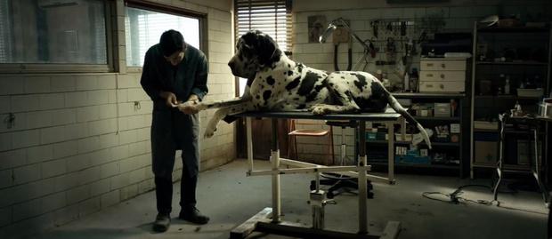 Фото №8 - Редакция выбирает: 10 фильмов Каннского кинофестиваля, которые стоит посмотреть