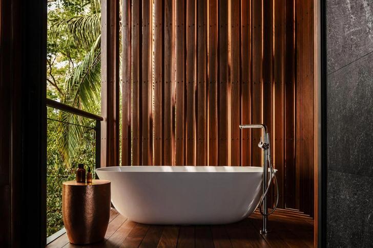 Фото №6 - Отель в тропическом лесу в Мексике