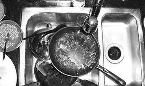 Фото №1 - Сальмонеллезом студентов Горного университета заразила мойщица посуды