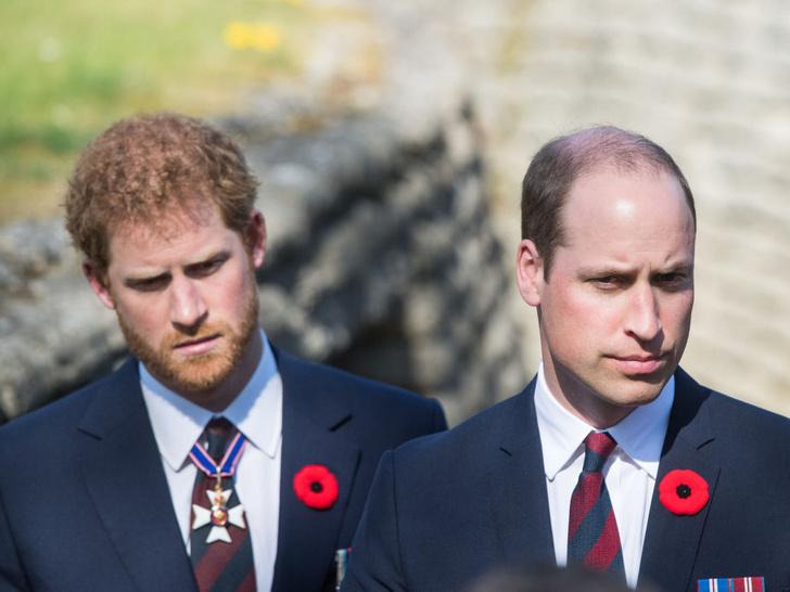 Фото №3 - Самый большой страх принца Уильяма после интервью Сассекских