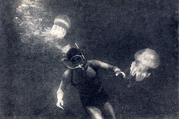 Фото №1 - В подводном каньоне