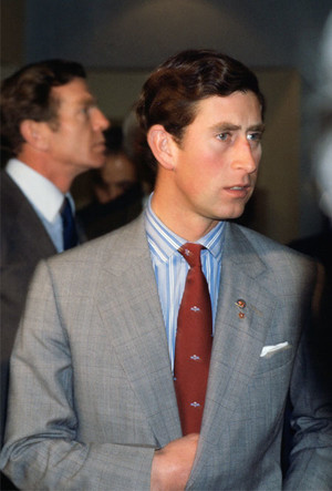 Фото №7 - Его модное Высочество: 8 доказательств того, что принц Чарльз— икона стиля