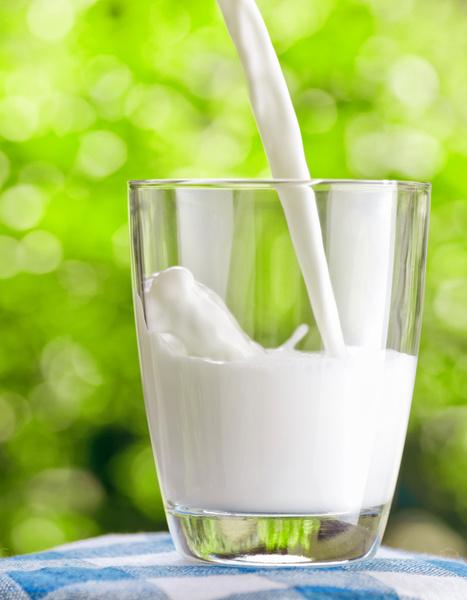 Фото №1 - Доктора развеяли миф о пользе молока