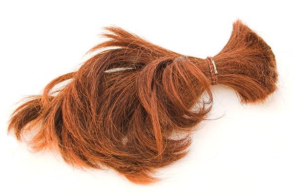 Фото №3 - Борьба за бесполезный волос