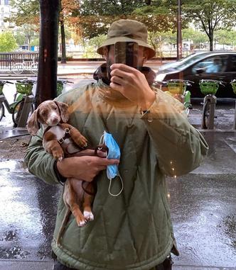 Фото №1 - Фэшн-дизайнеры и их собаки. Заряжено на лайки!
