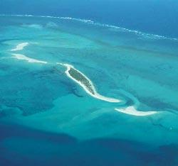 Фото №1 - Где находится остров мафия?