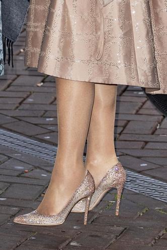 Фото №13 - Во всем блеске: любимые вечерние туфли королевских особ