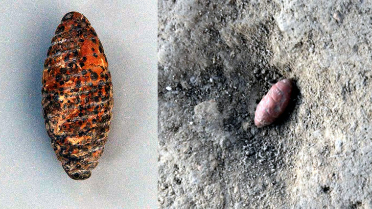 Фото №1 - В Китае обнаружена древнейшая скульптура тутового шелкопряда