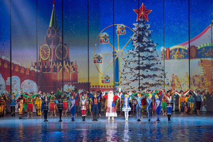Фото №2 - В «Москвариуме» на ВДНХ покажут новогодний мюзикл с морскими животными и цирковыми артистами