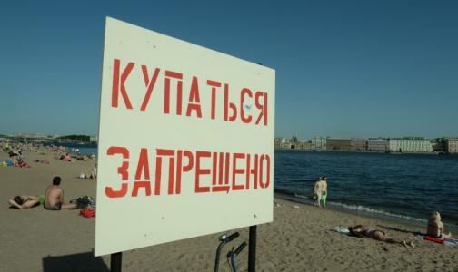 Фото №1 - В Петербурге проверили качество воды в местах для купания