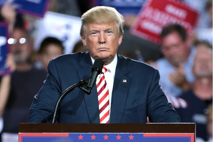 Фото №1 - В Конгрессе США начали рассматривать процедуру импичмента Дональду Трампу