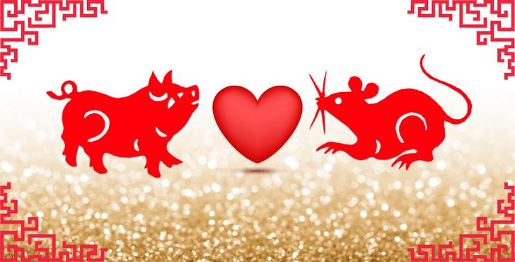 Фото №9 - Любовь по китайскому гороскопу: с кем тебе суждено быть вместе? 😍