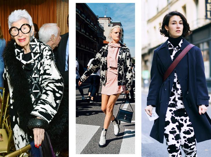 Фото №1 - Коровий принт – новый модный конкурент «леопарда» и «зебры»