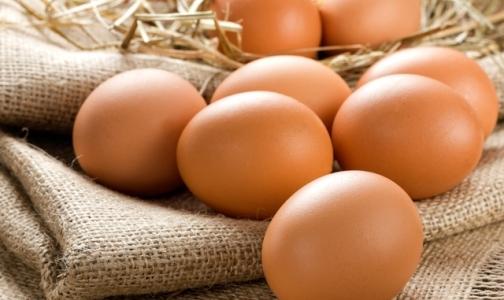 Фото №1 - В Петербурге выбрали самые полезные яйца