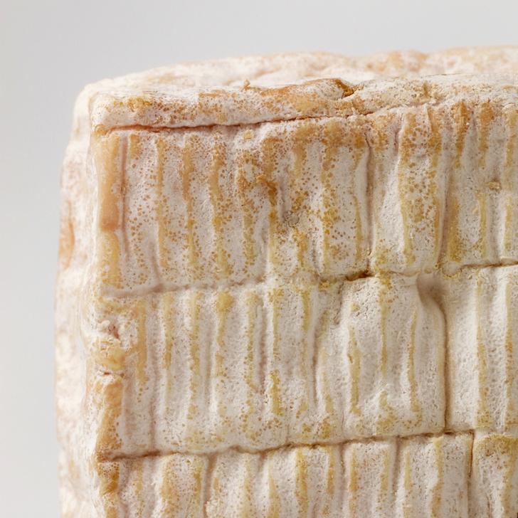 Фото №3 - Любовь вопреки: 8 самых пахучих сыров в мире