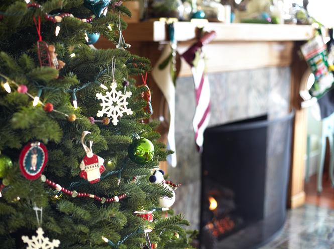 Фото №2 - Ешь, двигайся, живи: 14 советов на новогодние праздники