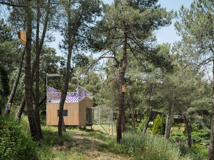 Фото №1 - Микродом в сосновом лесу в Испании