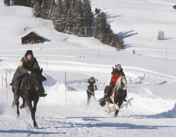 Фото №3 - Швейцария и ее необычные зимние развлечения, которые ждут вас прямо сейчас