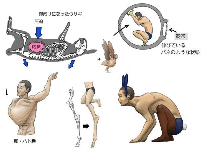 Фото №1 - Японский художник показал, как выглядели бы люди со скелетами разных животных (галерея)