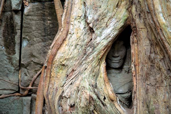Фото №1 - Возвращение Камбоджи