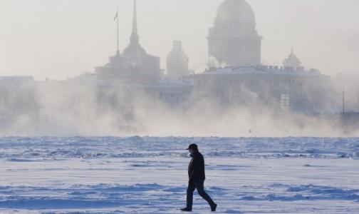 Фото №1 - Врачи сравнили средний рост москвича и петербуржца