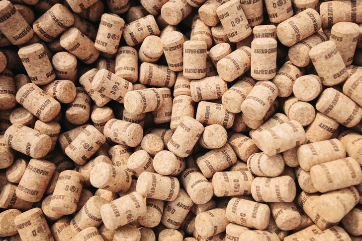 Фото №1 - «Пикник Абрау» — первый в Петербурге винный фестиваль под открытым небом