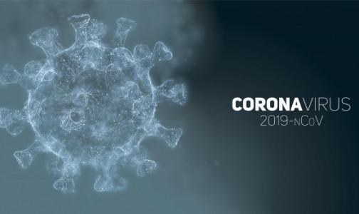 Фото №1 - Ученые сделали неожиданный вывод о повреждениях микрососудов головного мозга у пациентов с COVID-19
