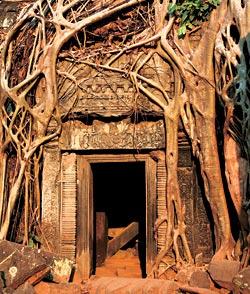 Фото №10 - Возвращение Камбоджи