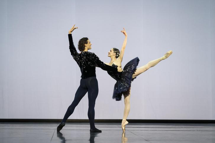 Фото №4 - Посмотреть балет, не выходя из дома: Парижская опера покажет онлайн концерт