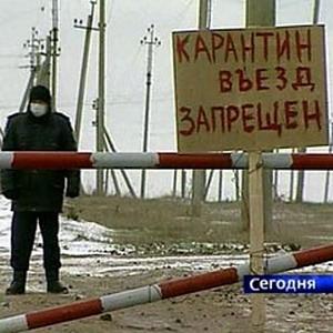 Фото №1 - В России вспышка птичьего гриппа